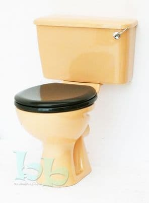 Sun King Toilet Pan and Cistern Close-Coupled