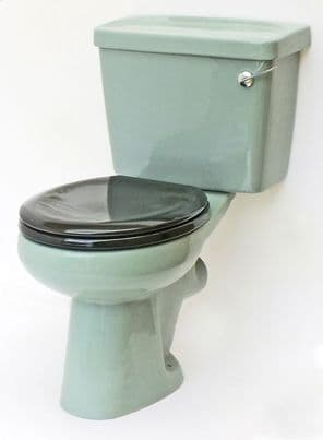 Wild Sage Toilet Pan and Cistern Close-Coupled