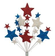 Bright Star in Red, White and Blue
