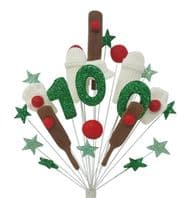 Cricket 100th birthday cake topper decoraton - free postage