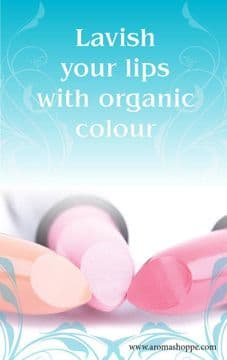 Learn the Art of Making Lip Makeup - e course