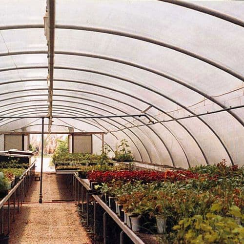 Polytunnel Cover Polythene