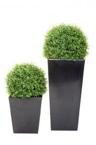 Artificial Boxwood balls From potstore.co.uk