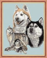 Wild Animal Cross Stitch Designs