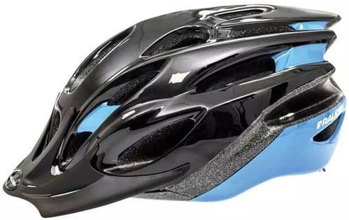 Raleigh Mission Evo Cycle Helmet, Black & Blue, 2 Sizes Available